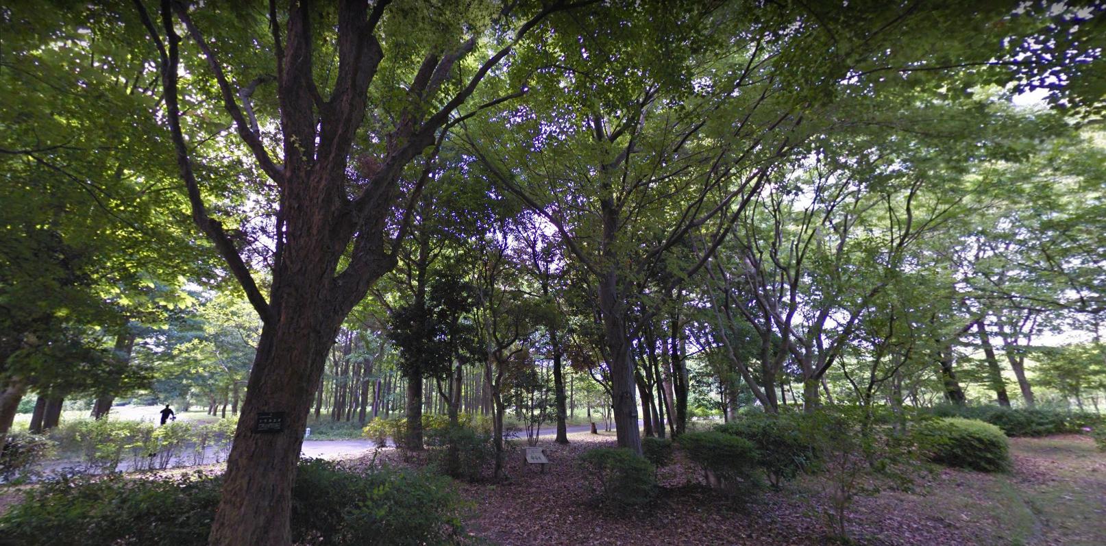 水元公園事件場所どこ